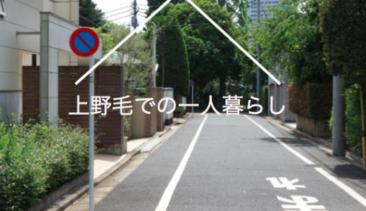 上野毛での一人暮らし、住みやすさと治安【環状8号線沿いは遠出に便利】